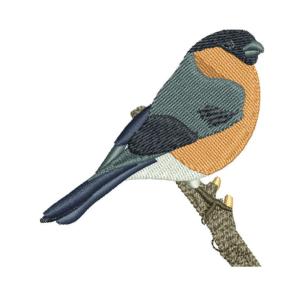 Bird Embroidery Designs