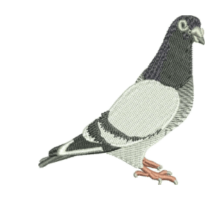 Pigeon Embroidery Designs